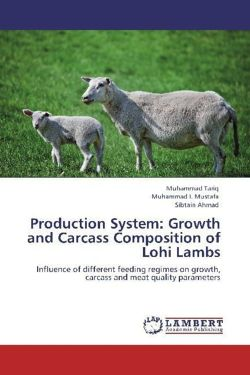 Production System: Growth and Carcass Composition of Lohi Lambs