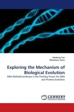 Exploring the Mechanism of Biological Evolution