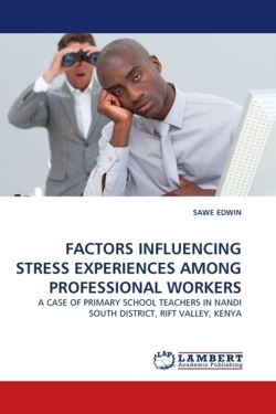 FACTORS INFLUENCING STRESS EXPERIENCES AMONG PROFESSIONAL WORKERS
