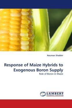 Response of Maize Hybrids to Exogenous Boron Supply