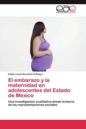El embarazo y la maternidad en adolescentes del Estado de México - Una investigación cualitativa desde la teoría de las representaciones sociales - Barcklow D'Amica, Emily Louise