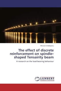 The effect of discrete reinforcement on spindle-shaped Tensairity beam