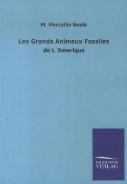 Les Grands Animaux Fossiles (French Edition)