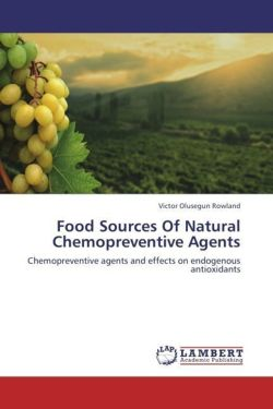 Food Sources Of Natural Chemopreventive Agents