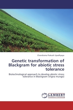 Genetic transformation of Blackgram for abiotic stress tolerance
