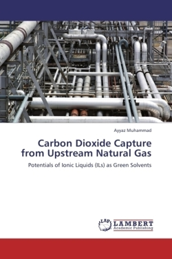 Carbon Dioxide Capture from Upstream Natural Gas