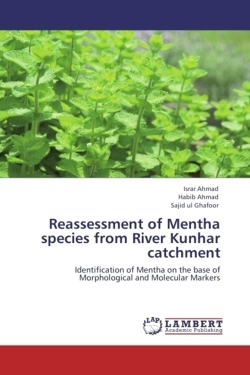 Reassessment of Mentha species from River Kunhar catchment