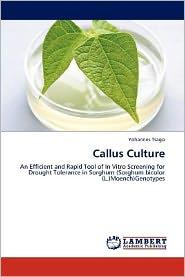 Callus Culture - Yohannes Tsago