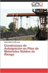 Condiciones de Autoignicion En Pilas de Materiales Solidos de Riesgo - Alberto Herrera Morueco