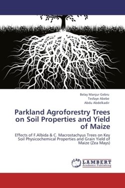Parkland Agroforestry Trees on Soil Properties and Yield of Maize