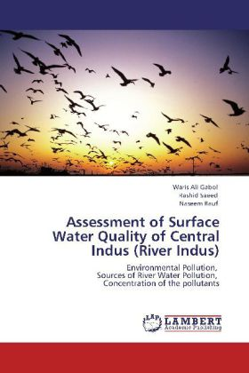Assessment of Surface Water Quality of Central Indus (River Indus) - Environmental Pollution, Sources of River Water Pollution, Concentration of the pollutants