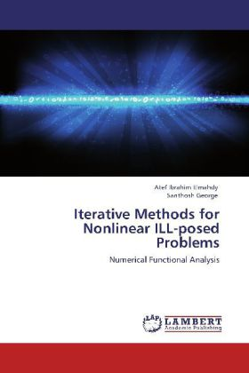 Iterative Methods for Nonlinear ILL-posed Problems - Numerical Functional Analysis