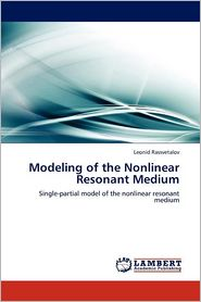 Modeling of the Nonlinear Resonant Medium