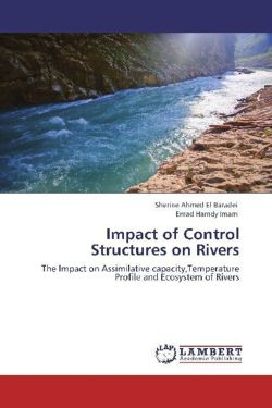 Impact of Control Structures on Rivers