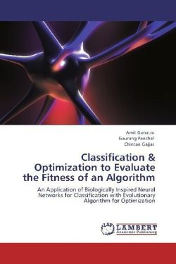 Classification  & Optimization to Evaluate the Fitness of an Algorithm