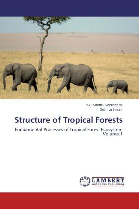 Structure of Tropical Forests - Fundamental Processes of Tropical Forest Ecosystem Volume.1