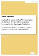 Sabine Drehmann: Sacheinlage immaterieller Wirtschaftsgüter im Rahmen der Kapitalisierung nicht börsennotierter Kapitalgesellschaften