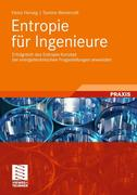 Herwig, Heinz;Wenterodt, Tammo: Entropie für Ingenieure