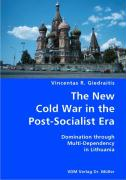 The New Cold War in the Post-Socialist Era