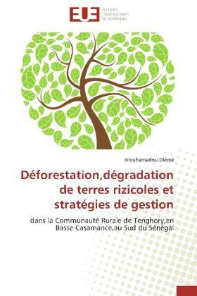 Déforestation,dégradation de terres rizicoles et stratégies de gestion - dans la Communauté Rurale de Tenghory,en Basse Casamance,au Sud du Sénégal - Diémé, Mouhamadou