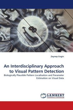 An Interdisciplinary Approach to Visual Pattern Detection