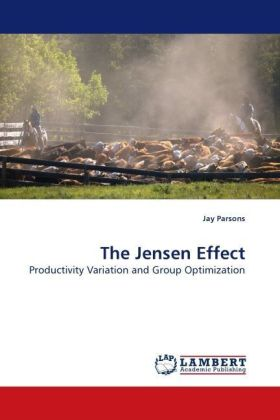 The Jensen Effect - Productivity Variation and Group Optimization