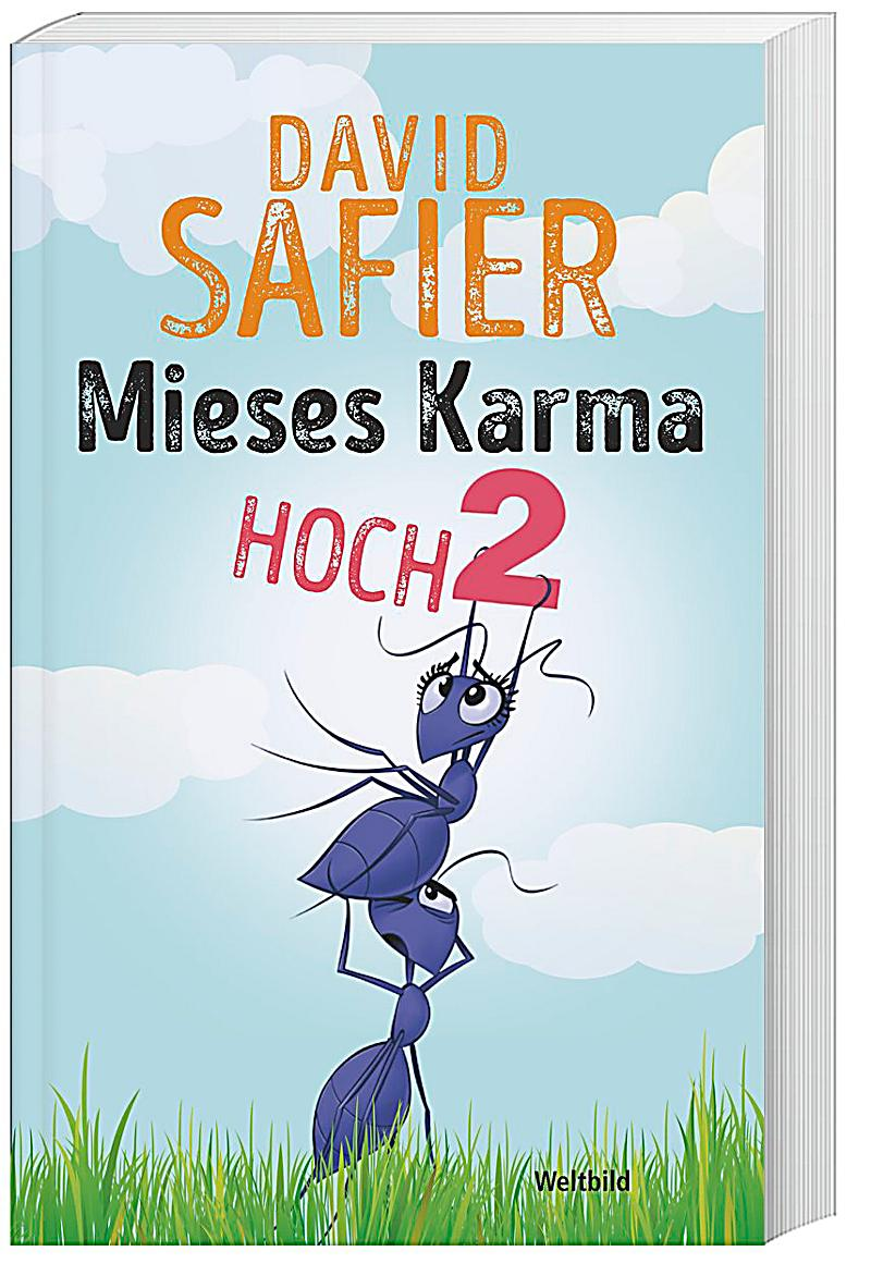 Ebook david karma safier mieses
