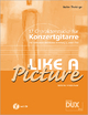 Like A Picture - Walter Theisinger