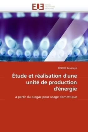 Étude et réalisation d'une unité de production d'énergie - à partir du biogaz pour usage domestique