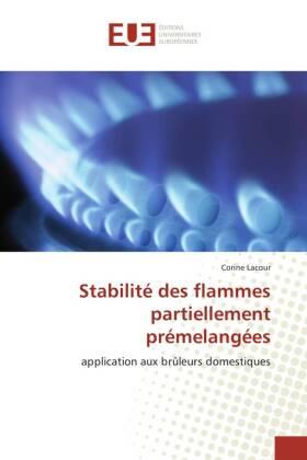Stabilité des flammes partiellement prémelangées - application aux brûleurs domestiques
