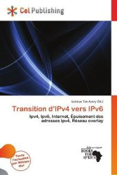 Transition d'IPv4 vers IPv6 - Iustinus Tim Avery