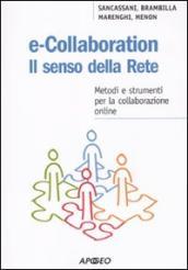 E-collaboration. Il senso della rete. Metodi e strumenti per la collaborazione online
