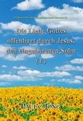 Predigten über das Evangelium nach Johannes (I) - Die Liebe Gottes offenbart durch Jesus, den eingeborenen Sohn ( I )