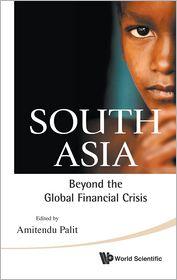 South Asia: Beyond the Global Financial Crisis - Amitendu Palit (Editor)