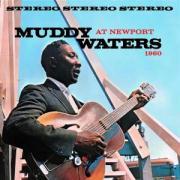 At Newport 1960 - Waters, Muddy