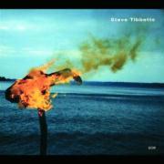 A Man About A Horse - Tibbetts, Steve