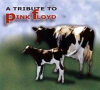 A Rock Tribute To Pink Floyd - Various