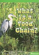 What Is a Food Chain? - Nicole, Heather