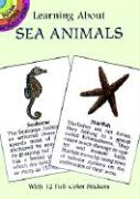 Learning about Sea Animals - Barlowe, Sy