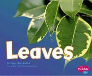 Leaves - Bodach, Vijaya