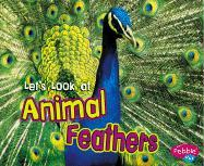 Let's Look at Animal Feathers - Perkins, Wendy