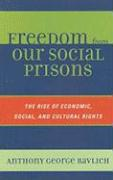 Freedom from Our Social Prisons: The Rise of Economic, Social, and Cultural Rights - Ravlich, Anthony George