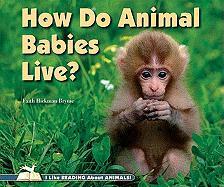 How Do Animal Babies Live? - Brynie, Faith Hickman