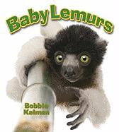 Baby Lemurs - Kalman, Bobbie