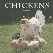 Chickens - Hall, Derek