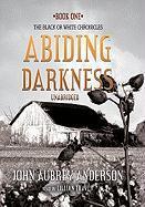Abiding Darkness - Anderson, John Aubrey