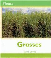 Grasses - Loves, June