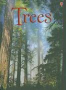 Trees - Gillespie, Lisa Jane