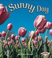A Sunny Day - Nelson, Robin
