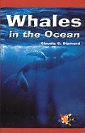 Whales in the Ocean - Diamon, Claudia